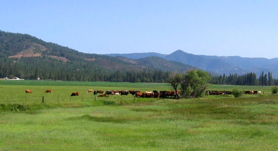 Land for sale in Northern California Ranches for sale in Northern California