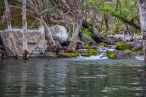 fishing properties for sale in Northern California